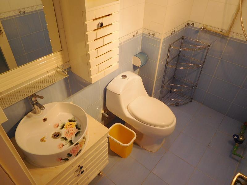 昌平霍营8号线回龙观东大街龙锦苑东一区4居室