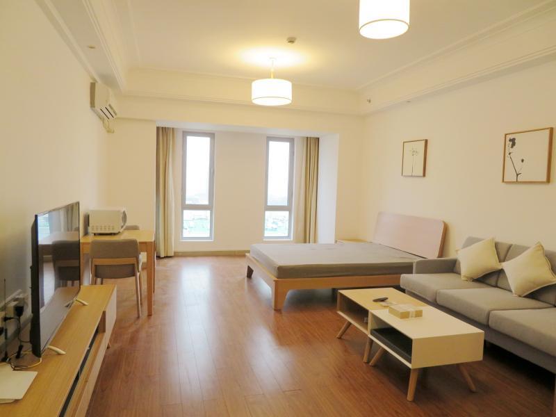 松江松江大学城9号线松江大学城万达广场(松江)1居室